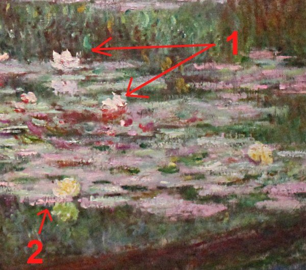 How Many Water Lilies Did Monet Paint