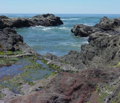 Still Waters, Oregon Coast