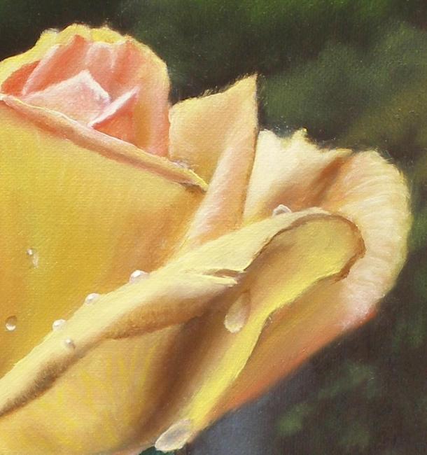 yellow rose petals upclose painting